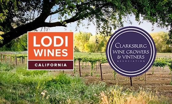 Lodi Wine Clarksburg wine