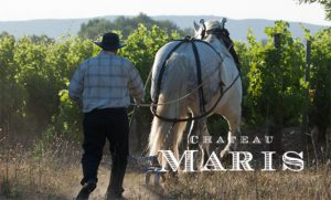 Episode #534 - Biodynamic and Built From Hemp in the South of France