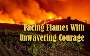 Episode #536 - Wine Country Communities Face Inferno With Courage and Conviction