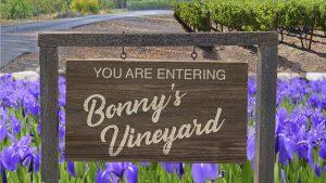 Bonny's Vineyard